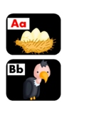 Bird Word Wall Alphabet Letter Headers