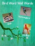 Bird Word Wall Words
