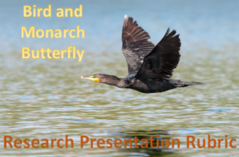 Bird and Monarch Butterfly Migration Research / Presentation Rubric
