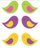 Birds- multicolored