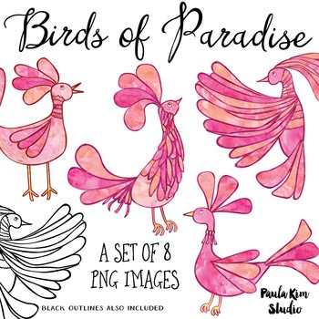 Bird of Paradise Clip Art Set - Pink Watercolor