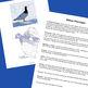 Bird of the Arctic - Willow Ptarmigan