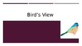 Bird's Eye View Powerpoint