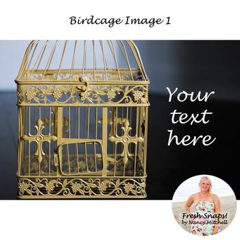 Birdcage Image 1
