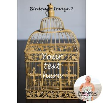 Birdcage Image 2