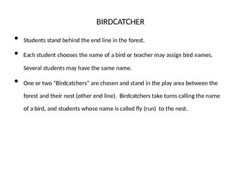 Birdcatcher Physical Education Game