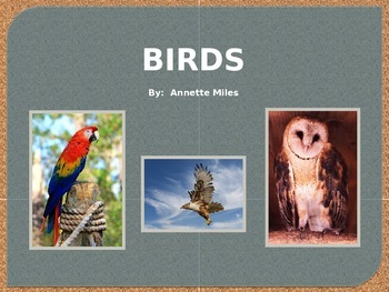 Birds Powerpoint