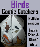 Birds Activity/ Foldable: Owl, Duck, Eagle, Vulture, Sparrow, Peacock, Etc.