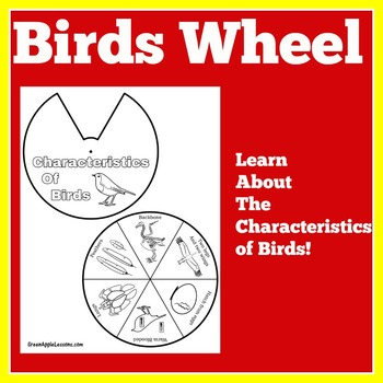 Birds Activity | Birds Unit | Characteristics of Birds