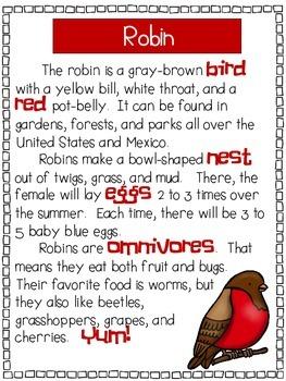 Birds - A First Grade Literacy Center