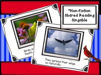 Birds: ALL About Birds Non-fiction Unit