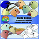 Birds Adaptations Clipart (Beaks and Feet)
