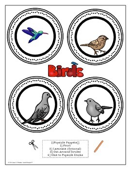 Birds All About Birds Interactive Research Activities