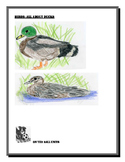 Birds: All About Ducks. Integrated Unit