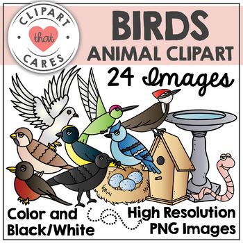 Birds Animal Clipart by Clipart That Cares