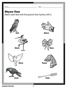 Birds: Animals of the Sky