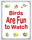 Birds Are Fun To Watch capitalization worksheets