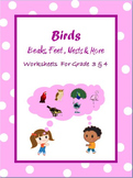 Birds  - Beaks, Feet, Nests and More