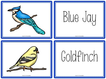 Bird Activities Book to Cut and Create, Matching Cards for Centers, and Posters