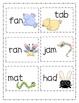 Birds & Bugs Springtime Short A & Long A Write the Room