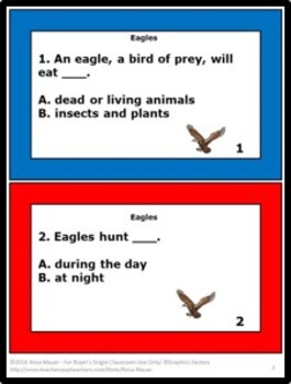 Birds Bundle Science Task Cards and Worksheets