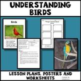 Birds - Characteristics of Animals Leson Plan, Photos, Poster