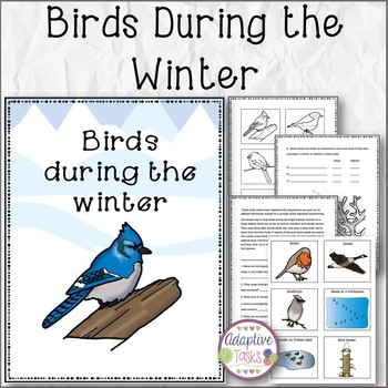 Birds During The Winter Reading Comprehension and Matching