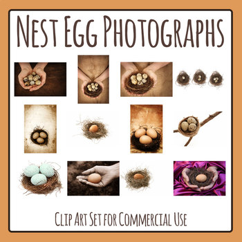 Birds Egg and Nests Photos / Photograph Clip Art Set for Commercial Use
