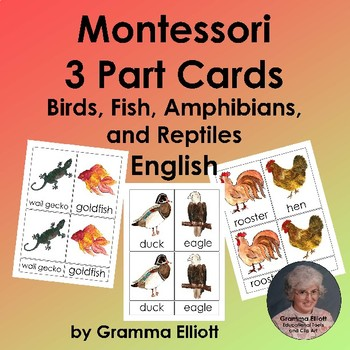 Birds, Fish, Amphibians, and Reptiles Montessori 3 Part Cards English Only