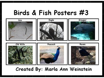 Birds & Fish Posters #3