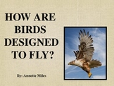 Birds - How They Are Designed For Flight PowerPoint
