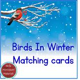 Birds In Winter - Montessori Matching Cards