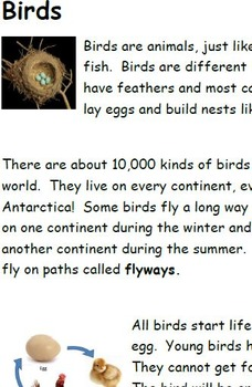 Birds Informational Text