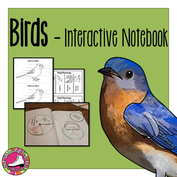 Birds Interactive Notebook