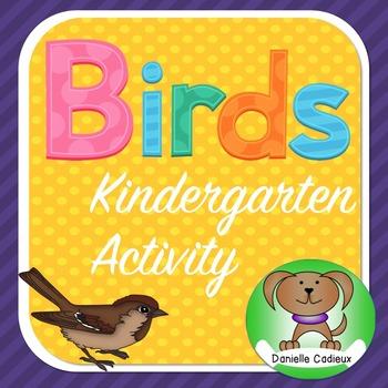 Birds Kindergarten Activity