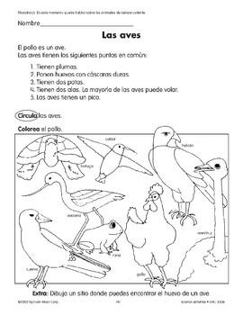 Birds/Las aves and Chickens/El pollo