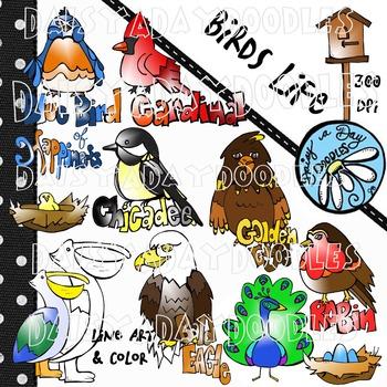 Birds Life - Clipart & Lineart