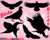 Birds Mascot Woodland SVG Eagle Love Labels mascot bird school Clipart zoo 338s