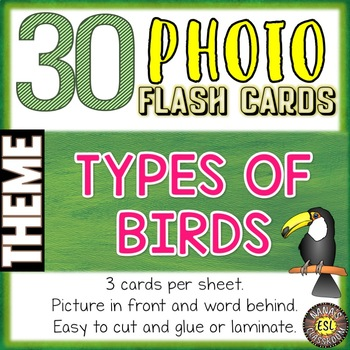 Types of Birds Photo Flash Cards