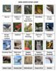 Birds Pipe Line Game  -- Volume 2