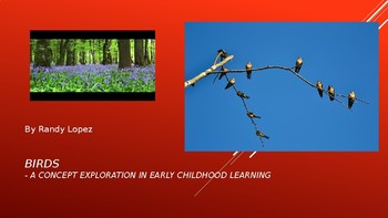 Birds PowerPoint for 2nd and 3rd grades
