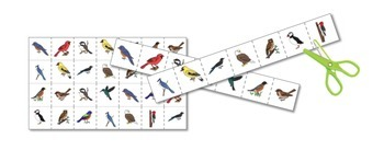 Birds Preschool Pack