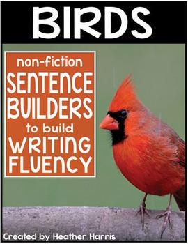 Birds Sentence Builders