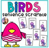Birds Sentence Scramble- Non Fiction