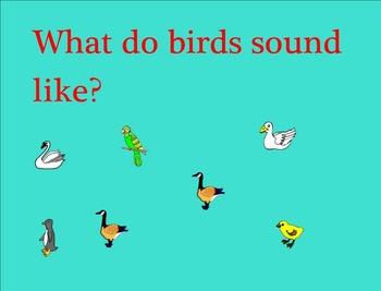 Birds Smart Notebook Lesson