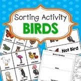 Birds Sorting Activities