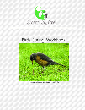 Birds - Spring Workbook