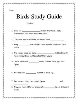 Birds Study Guide