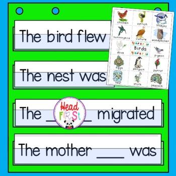 Birds Pictionary Cards - Vocabulary, Writing Center, Write the Room