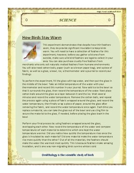 Birds Themed Nature Education Unit-Stage 2 (Magic Forest Academy)